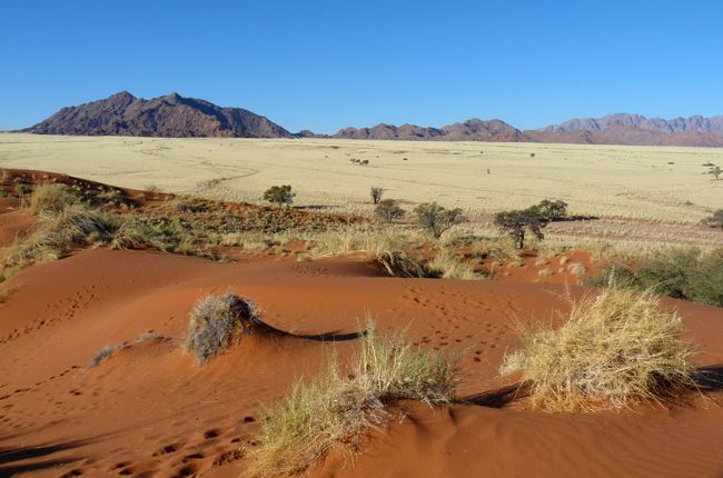 Travel to the namib desert in the naukluft national park. We can see Sossusvlei