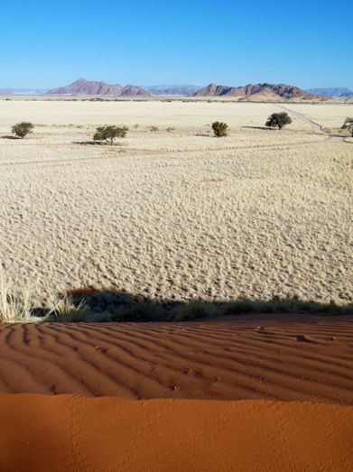 travel to Namibia and view of the Namib desert on top of Dune 45 called big daddy