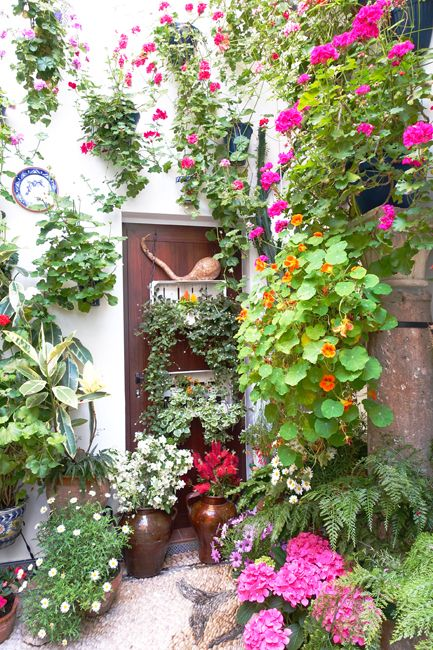 in may, there is a contest of the nices patios de cordoba