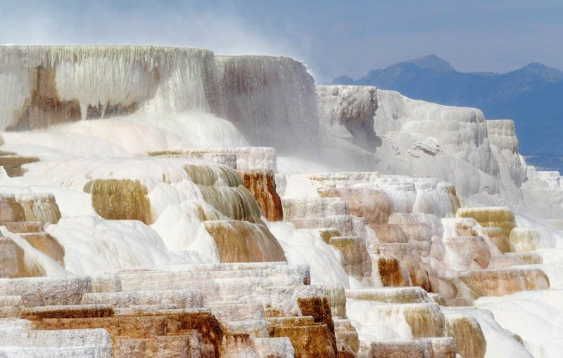 Mammoth Hot Springs, au coeur du Parc National de Yellowstone