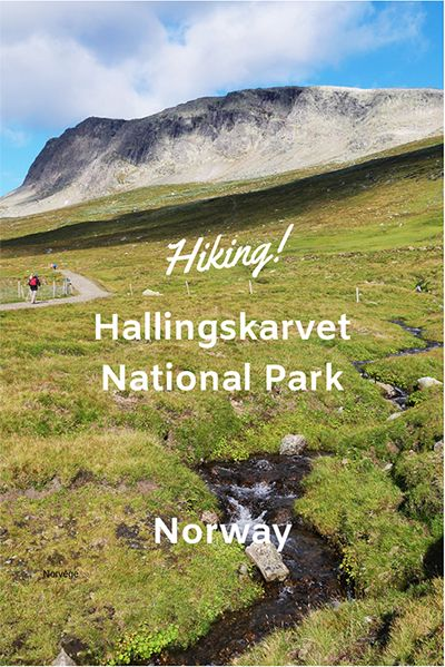 Hiking hallingskarvet national park
