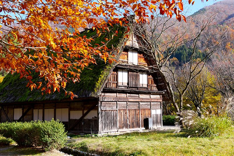 japan_shirakawa-go-ogimachi